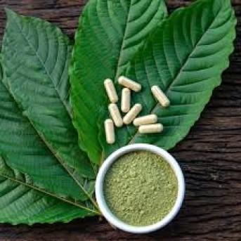Star Radio - Kratom, Tumbuhan Herbal asal Indonesia yang Jadi Narkoba di Amerika